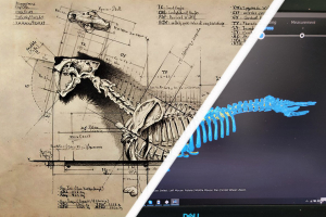 Sculpture Design: Bringing Prehistoric Beasts to the 21st Century With a Fusion of Art and Science